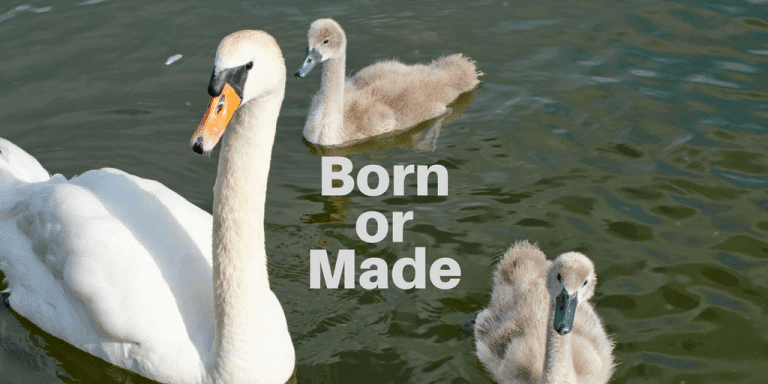 managers are made not born