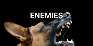 Servant Leadership Workplace-Enemies