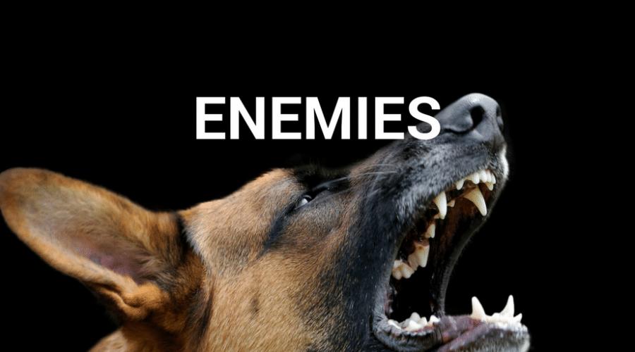 Servant-Leaders Make Enemies