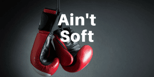 Servant Leadership Workplace-Soft