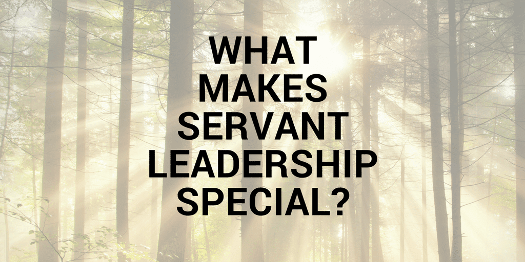 Servant Leadership Workplace-Special