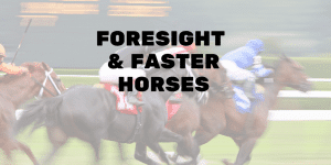 Servant Leadership Workplace-Faster Horses