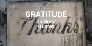 Servant Leadership Workplace-Gratitude Quotes