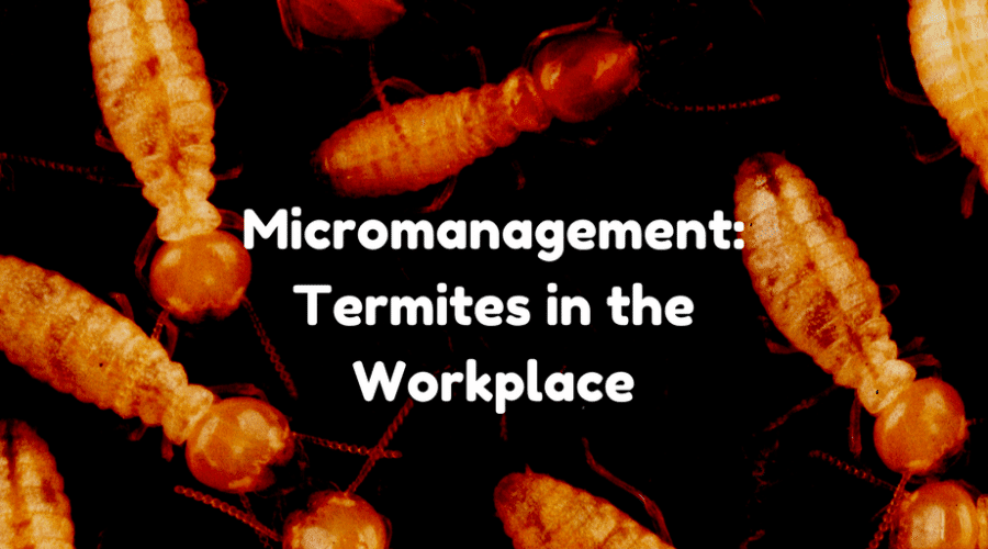 Micromanagement: Termites in the Workplace