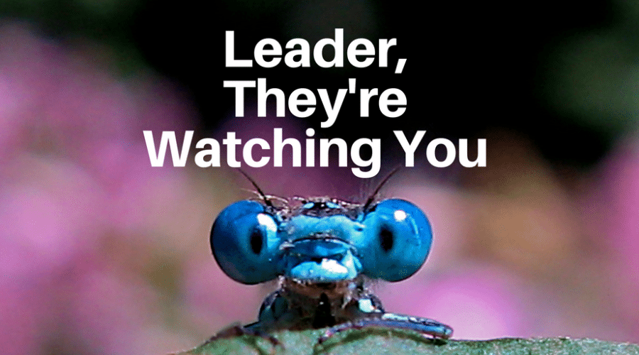 Leader, They're Watching You