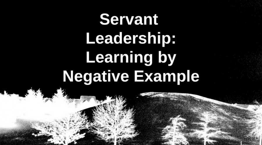 Servant Leadership: Learning by Negative Example